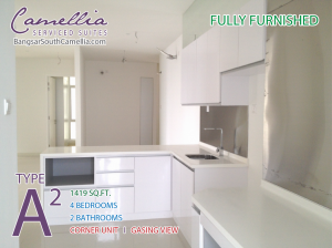 photo-bangsar-south-camellia-unit-type-a2-kitchen-cabinet