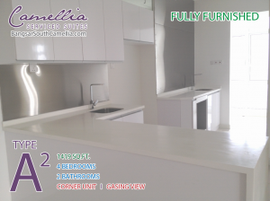 photo-bangsar-south-camellia-unit-type-a2-kitchen-furnished